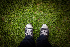 Man standing on green grass. Man with Black sneakers at green grass looking at his shoes, first eye view Stock Images