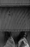 Man standing on move up escalator Stock Images