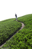 Man standing on a narrow path Royalty Free Stock Photos