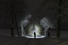 Free Man Standing Outdoors At Night In Tree Alley Shining With Flashlight Stock Photos - 108838173