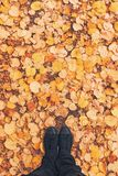 Man standing in the park on dry autumnal leaves pile stock image