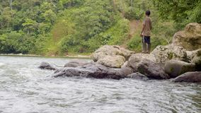 Man standing on rock in forest. Men walking on stones in amazonian river at forest in Ecuador stock video footage
