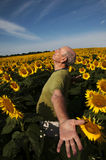 Man standing in Sunflower Heaven Royalty Free Stock Photos
