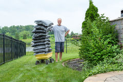 Man Standing beside a Wagon with Bagged Mulch. Homeowner Man Standing beside a Garden Wagon with a Pile of Bagged Mulch at the Backyard While Looking at the stock photography