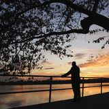 Man standing by water Royalty Free Stock Photos