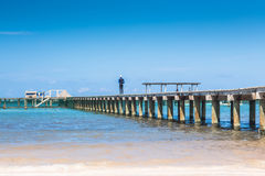 Man standing on a wooden pier Stock Images