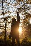 Man standing in the woods facing a setting sun Stock Image