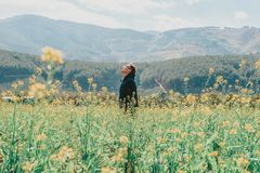 Man Standing on Yellow Rapeseed Flower Field Across Mountains royalty free stock images