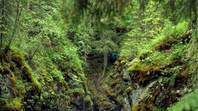 Man stands at cliff in woods. Stock footage. Top view of traveler stuck in gorge over cliff in forest. Mossy steep. Ravine in which traveler got stuck during stock video