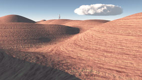 Man stands in desert Stock Images