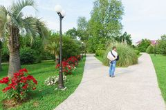 A man stands on a fork in the road in a beautiful Park of the southern resort town. Summer Royalty Free Stock Photography