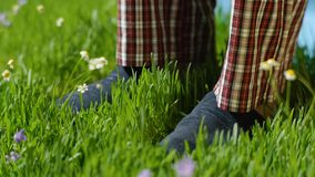 Man stands on the grass in Slippers. Male feet in sneakers on the grass Royalty Free Stock Photography