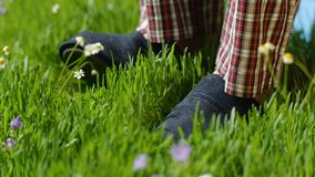 Man stands on the grass in Slippers. Male feet in sneakers on the grass Stock Image