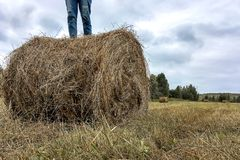 A man stands on a haystack royalty free stock photos