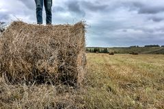 A man stands on a haystack royalty free stock photo