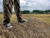 A man stands on a haystack stock images
