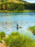a man stands knee-deep in a river with a fishing rod, fishing on a warm summer day stock image
