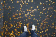 Person legs on autumnal city asphalt road Royalty Free Stock Images