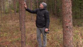 Man staring at the tree tops with binoculars. In autumn day stock video