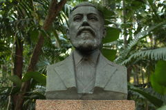 Man statue. Statue of a male bust in a brazilian green park Stock Photo