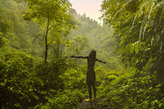 Man stays with his back in front of jungle and raise his hands to the sides. Freedom concept Royalty Free Stock Photography