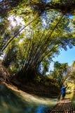 Man Steeting Bamboo Boat Royalty Free Stock Photography