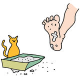 Man stepping in dirty kitty litter box. An image of a Man stepping in dirty kitty litter box Royalty Free Stock Images