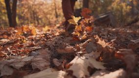 Man is stepping on ground in autumn forest, kicking foliage, close-up of feet stock video footage