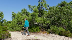 A Man with Stick Walking on Forest Trail stock footage