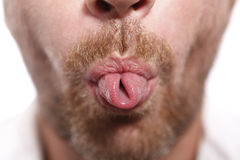 Man sticking out tongue. Man with beard sticking out tongue Royalty Free Stock Image