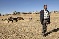 A man stood in front of cattle, Ethiopia Royalty Free Stock Photos