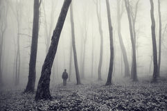 Man in strange mysterious forest with fog Royalty Free Stock Photos