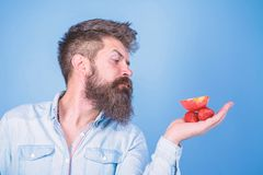 Man strict face with beard offers organic treats. I have treats for you. Man offers to try strawberries and apple fruit stock image