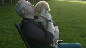 A man stroking a dog stock footage
