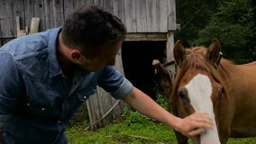 A man stroking a horse in the village stock footage