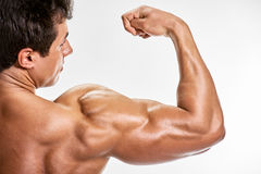 Man Strong arm. Strong bodybuilder man with perfect shoulders biceps triceps Stock Photos