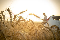 Man stuck with his car in a wheat field Stock Photos