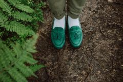 Man stylish shoes moccasins green forest fern stock photos