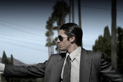Man in suit. With sunglasses and palmtrees in the background Stock Image