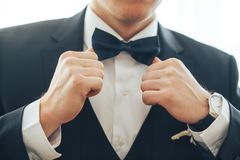 groom, suit, bow tie royalty free stock photography