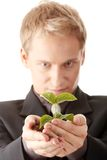 Man in suit holding smal plant in his hands Stock Photography