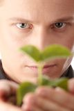 Man in suit holding smal plant in his hands Stock Images