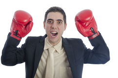 Man in suit with red boxing gloves with his arms up shouting. Royalty Free Stock Image