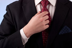 Man in suit. Young adult man in black suit and burgundy tie Royalty Free Stock Photography