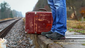 Man with a suitcase Royalty Free Stock Image