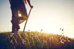 Man summer meadow flowers legs Stock Image