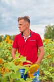 Man in the sunflower field Royalty Free Stock Photo