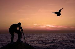Man, sunset and seagull. Man photographing sunset and a silhouette of seagull in flight Royalty Free Stock Photos