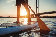 Man on SUP board. Cropped image of man on stand up paddle board. Having fun on SUP board during sunset. Active lifestyle Royalty Free Stock Photography