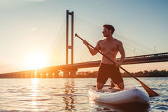 Man on SUP board. Man on stand up paddle board. Having fun on SUP board during sunset. Active lifestyle Royalty Free Stock Photo